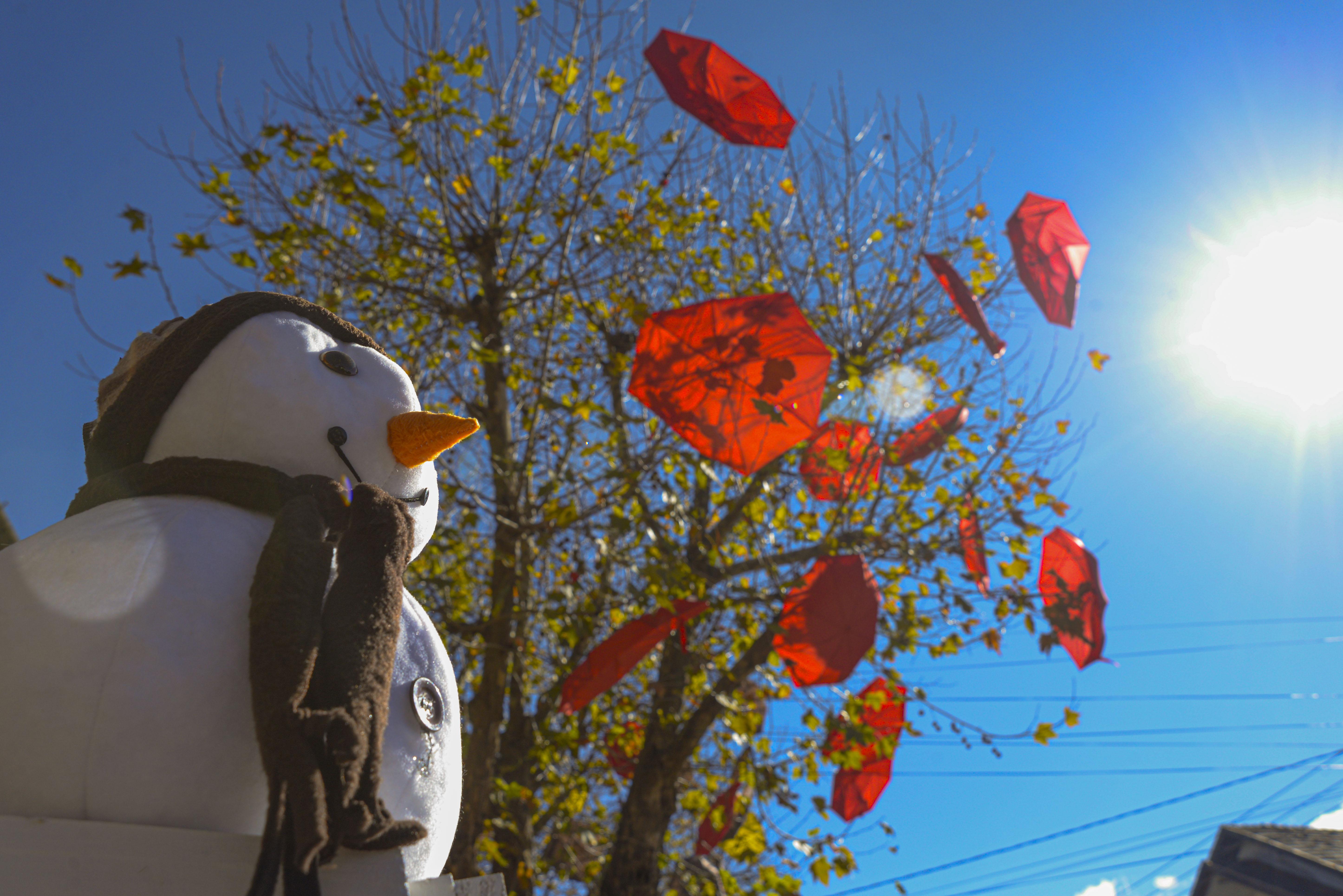 Temporada de Inverno de Canela